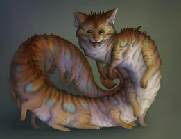 Longcat by Camelid