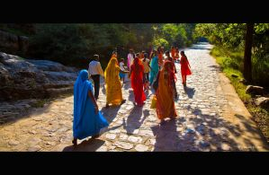 Road to Ranthambore by AndrewToPhotography