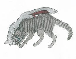 Silverstream's death -Takhi by StarClan