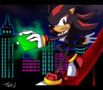 Shadow the Hedgehog by Tee-J