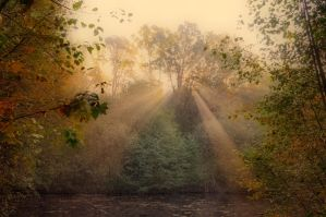 Autumnal world by tomsumartin