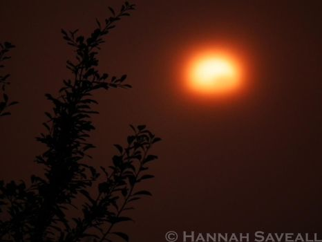 Foggy Sunset by hjsaveall