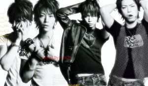 kame wallpaper for netbook by nakajimaieri