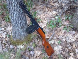 PPSH-41 by Wolf999679
