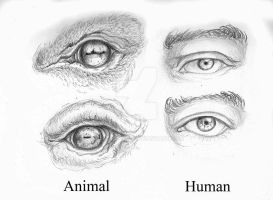 Traditional Eye practice! by ZombieWil