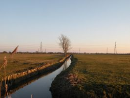 down the brook by elliemoo