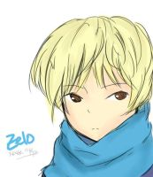 Zelo by BinaryBusiness