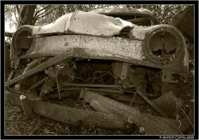 Cars vs. nature 11 by slipandslidesuicide