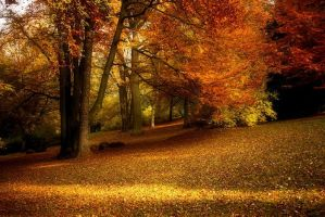 Autumn park XII by Lillian-Bann