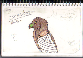 Coonclaws as a bird by jetlage300