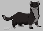 Stoat Character by DawnFrost