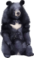 The Batman Bear by HappyCrumble