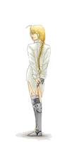 FMA - Looking Back by FerioWind