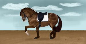 Dressage by TheDrawer96