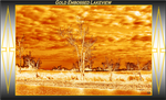 Gold Embossed Lakeview by Taures-15
