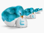 Blue Bird Twitter Icon Pack by detrans