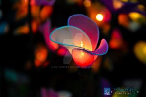 Artificial Flower by unitedcba