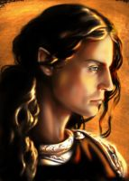 Feanor by tuuliky