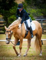 dressage good boy by dressageart13