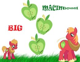 MLP:FiM Big Macintosh by lovergirl786