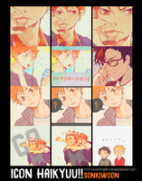 12 ICON HAIKYUU!! by Sonkiwoon