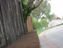 fence TWO by deniedfromfreedom