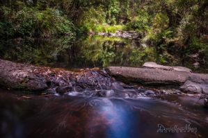 St Georges River Lorne by DanielleMiner