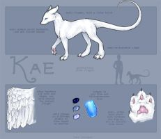 Ref Sheet - Kae by biostasis