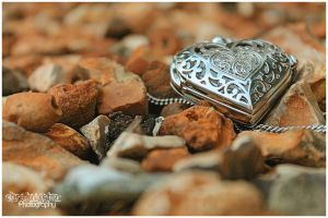 Pocket Watch 17 by Clerdy