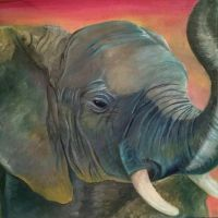 Elephant by PaintingColours