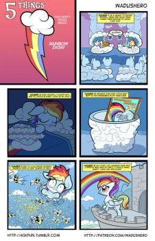 5 Things You Didn't Know About: Rainbow Dash by Rated-R-PonyStar