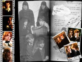 Ron+Hermione Wallpaper 01 by witch-fairy