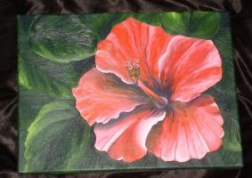 Red Hibiscus - acryl by XxXNadjaXxX