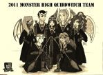 MH Quiddwitch Team by Xibira