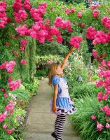 Alice in the Garden Photomanip 2 PS101 Assignm't 4 by SammaCo
