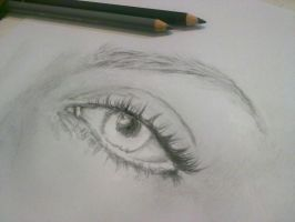 Eye Project - Elizabeth WIP 1 by Aty-S-Behsam