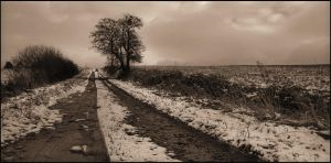 Winter path by LiveInPix