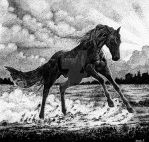 Storm Horse by saraquarelle