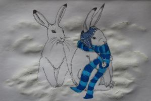 Animals in their winter clothes by chaosqueen122