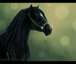 Irish Jubilee III - Lace by Equeline
