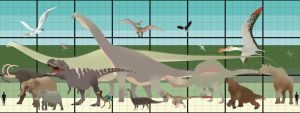 Size comparison of land animals by DasRuedi