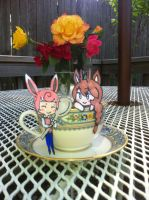 HPM: Tea Cup Party by Pyracanthii