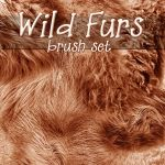 Wild Furs by patslash