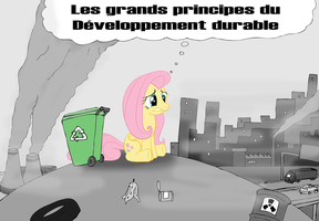 Fluttershy Developpement Durable by ZeFrenchM