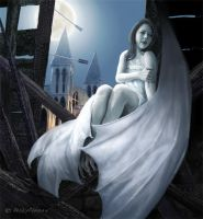 Midnight Flight by peskyterran