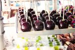 Candy Apples by love-in-focus-Photo