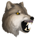 Wolf Head by wolves--anime