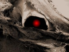 Eye of the dead by the-black-wolf-co-uk
