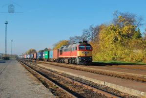 628 307 with container train in Gyorszabadhegy by morpheus880223