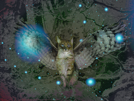Catowl by jantheempress